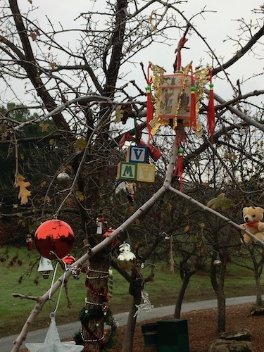 Photo of several ornaments on the back side of an outdoor tree