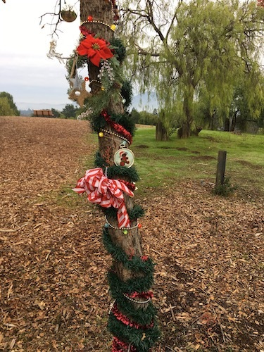 Photo of the trunk of a slender tree decorated for the holidays