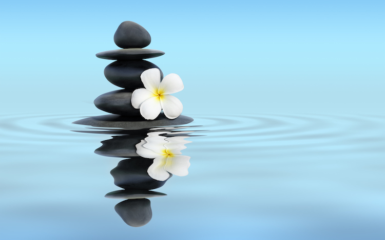 Zen stones with frangipani in tranquil water