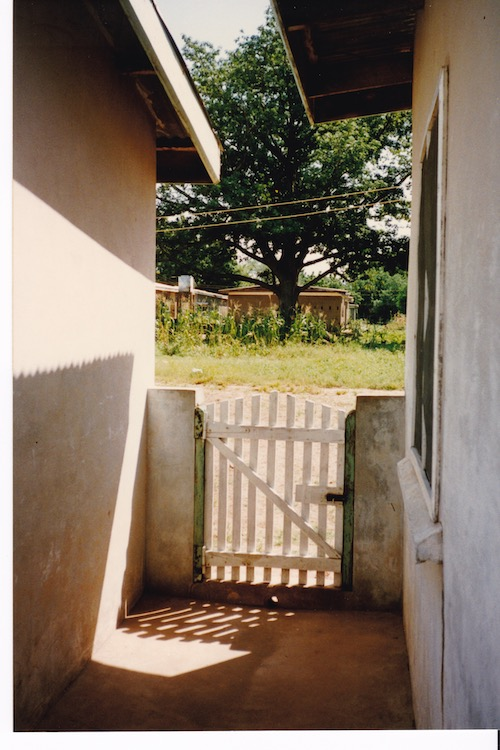 Photo of a white gate and beyond it a small plot of grass leading up to maize plants and more bungalows