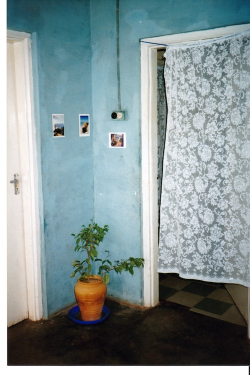 Corner of room showing open doorway to the right covered with a lace curtain. A green plant in a terracotta pot is in the corner. Walls are a washed out blue.