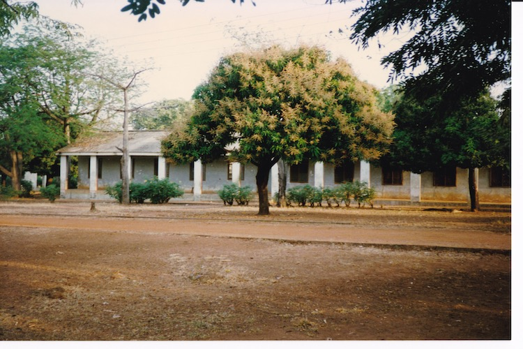 Photo of dirt in the foreground with a few trees and a row of low bushes in front of a white, single story building with square columns.