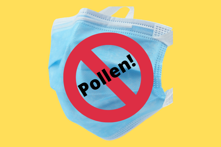 Image of a blue paper face mask on a yellow background. Across the mask is the text Pollen! covered by a red circle with a line through it.