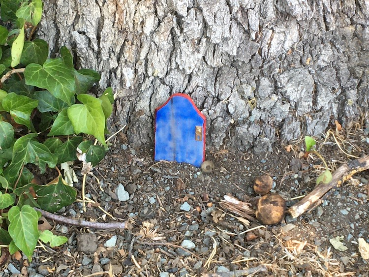 A photo of a small blue door made out of wood with a gold handle and the edges painted red, sitting at the base of a tree.