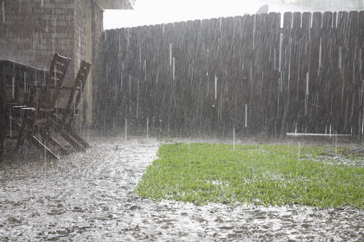 Photo of a backyard with a square of grass, a wooden fence and the backs of wooden chairs underneath an overhand on the left. It's raining and the area around the grass is under water.